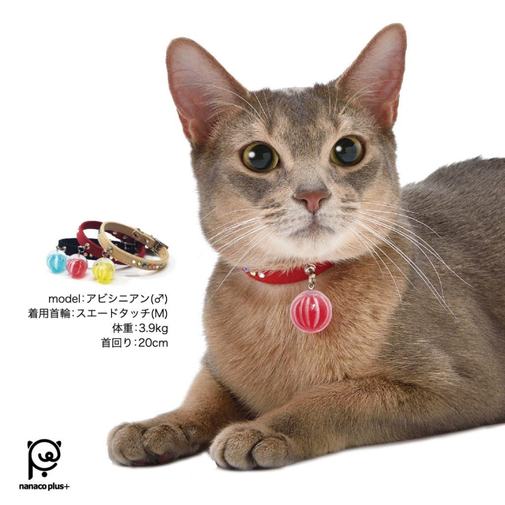 【Pe-ko】飴がえらべる首輪・スエードタッチ
